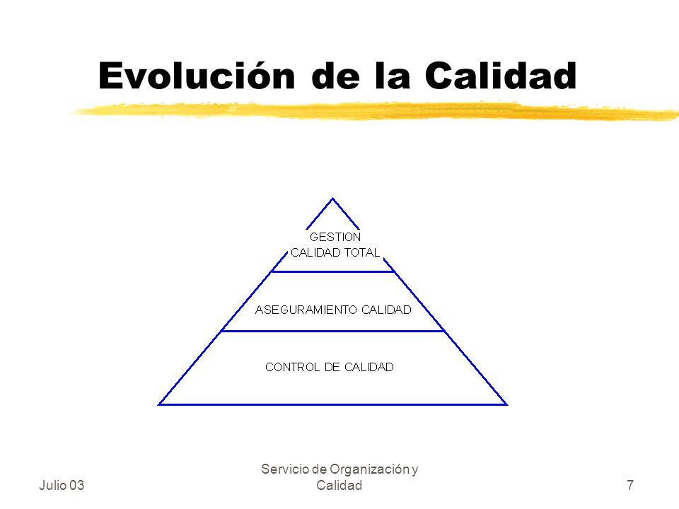 Julio 03 Servicio de Organización y Calidad7 Evolución de la Calidad