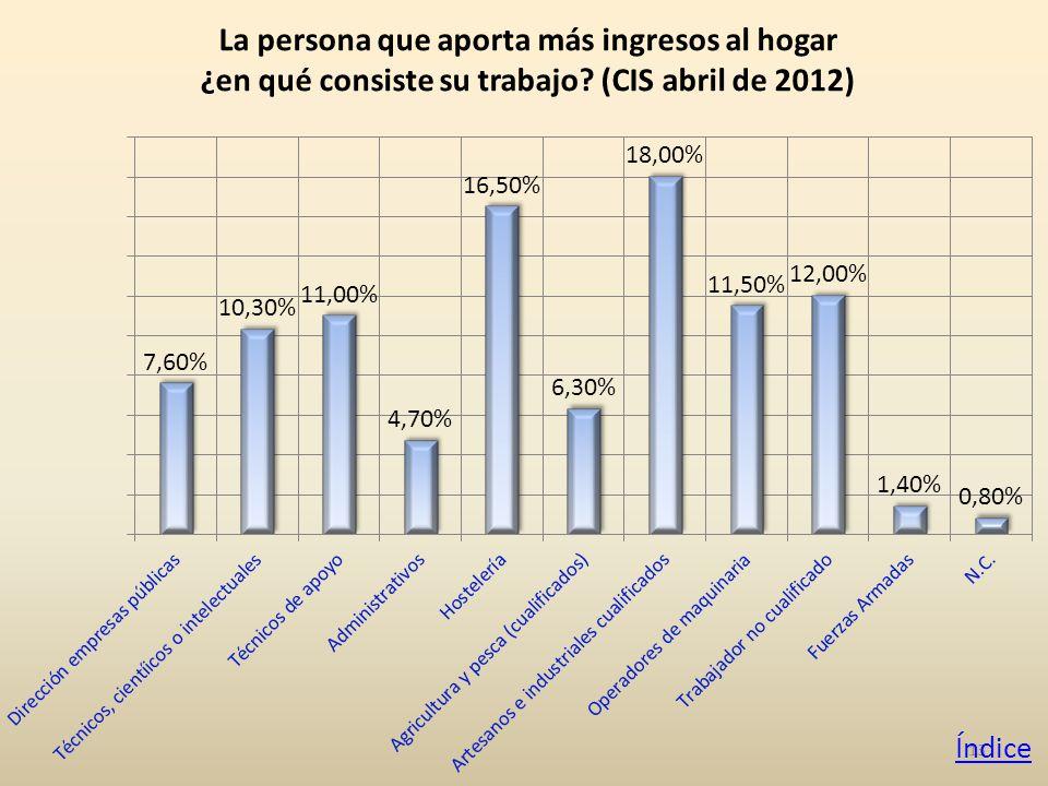 13 La persona que aporta más ingresos al hogar ¿en qué consiste su trabajo.