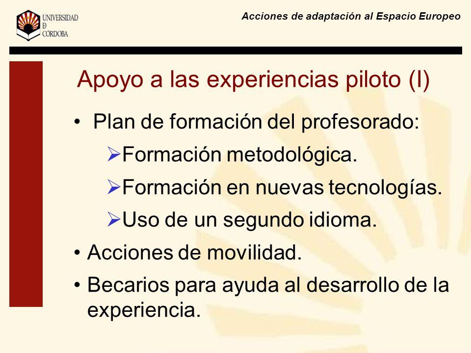 Acciones de adaptación al Espacio Europeo Apoyo a las experiencias piloto (I) Plan de formación del profesorado: Formación metodológica. Formación en
