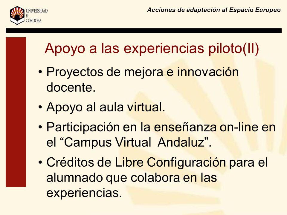 Acciones de adaptación al Espacio Europeo Apoyo a las experiencias piloto(II) Proyectos de mejora e innovación docente. Apoyo al aula virtual. Partici