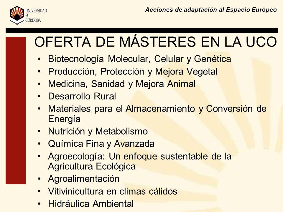 Acciones de adaptación al Espacio Europeo OFERTA DE MÁSTERES EN LA UCO Biotecnología Molecular, Celular y Genética Producción, Protección y Mejora Vegetal Medicina, Sanidad y Mejora Animal Desarrollo Rural Materiales para el Almacenamiento y Conversión de Energía Nutrición y Metabolismo Química Fina y Avanzada Agroecología: Un enfoque sustentable de la Agricultura Ecológica Agroalimentación Vitivinicultura en climas cálidos Hidráulica Ambiental