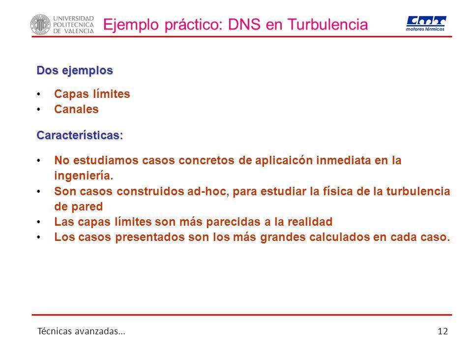 Ejemplo práctico: DNS en Turbulencia Capas límites Canales Dos ejemplos Características: No estudiamos casos concretos de aplicaicón inmediata en la i