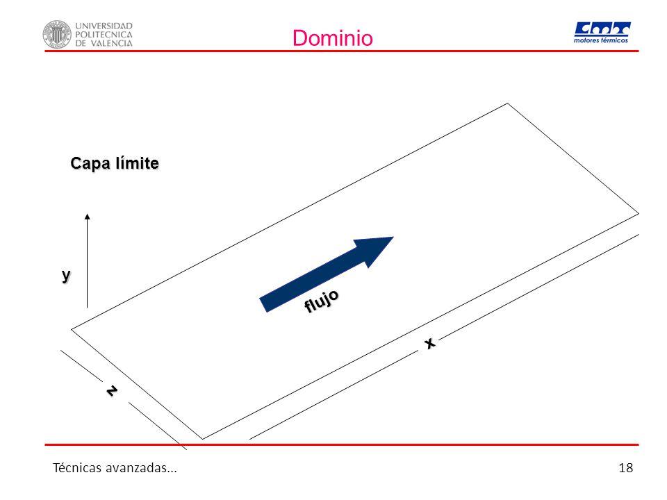 Dominio flujo x z y Capa límite Técnicas avanzadas...18