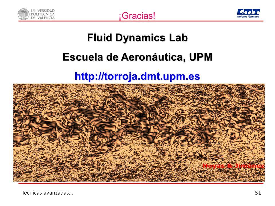¡Gracias! Fluid Dynamics Lab Escuela de Aeronáutica, UPM http://torroja.dmt.upm.es Técnicas avanzadas...51