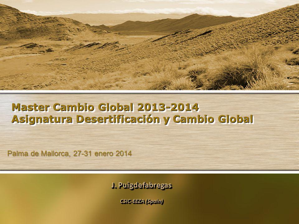 Master Cambio Global 2013-2014 Asignatura Desertificación y Cambio Global J. Puigdefabregas CSIC-EEZA (Spain) J. Puigdefabregas CSIC-EEZA (Spain) Palm