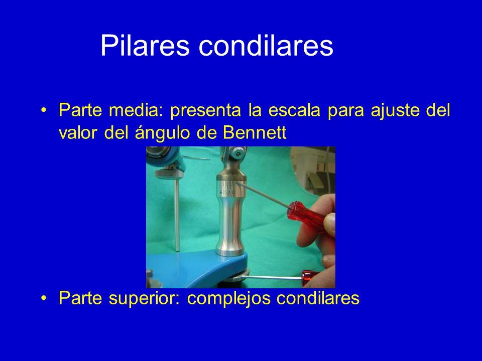Pilares condilares Parte media: presenta la escala para ajuste del valor del ángulo de Bennett Parte superior: complejos condilares