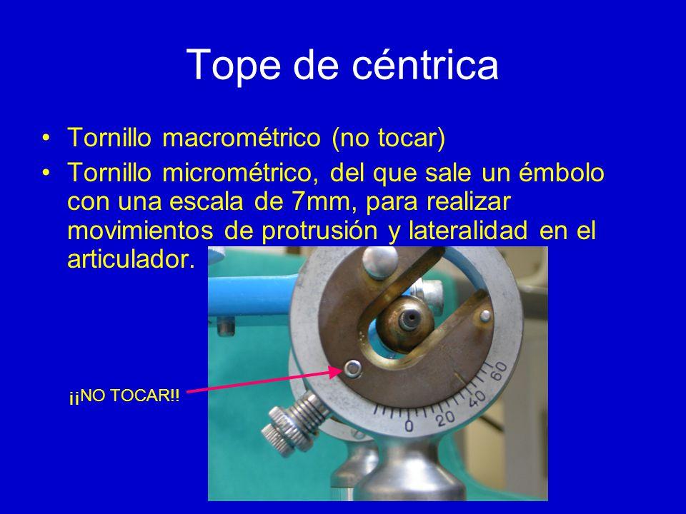 Tope de céntrica Tornillo macrométrico (no tocar) Tornillo micrométrico, del que sale un émbolo con una escala de 7mm, para realizar movimientos de protrusión y lateralidad en el articulador.