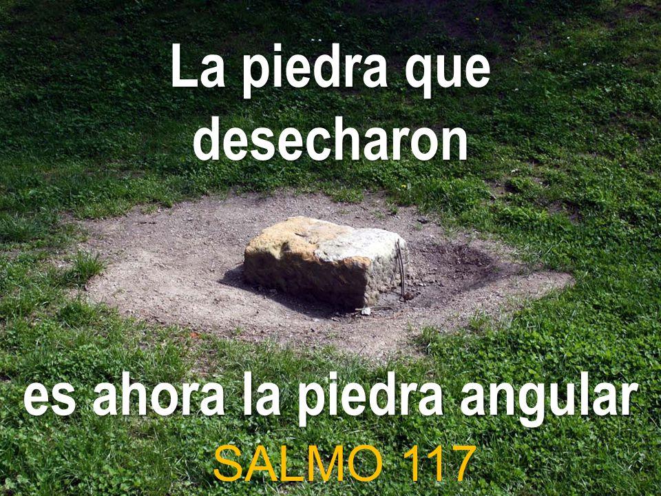 La piedra que desecharon es ahora la piedra angular SALMO 117