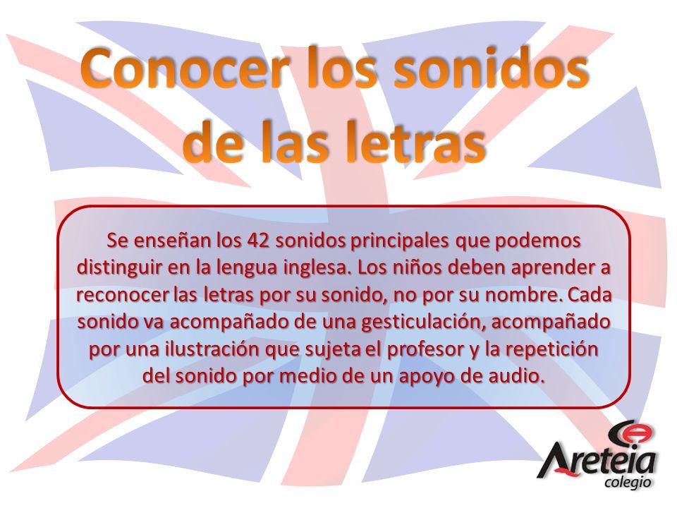 Se enseñan los 42 sonidos principales que podemos distinguir en la lengua inglesa. Los niños deben aprender a reconocer las letras por su sonido, no p