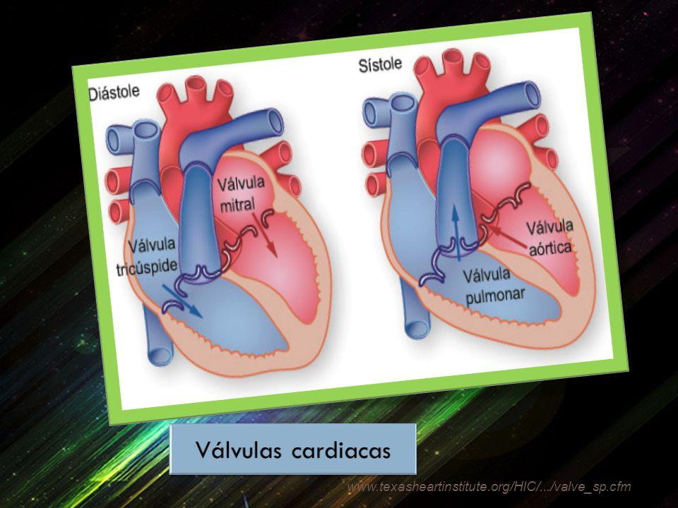 www.texasheartinstitute.org/HIC/.../valve_sp.cfm