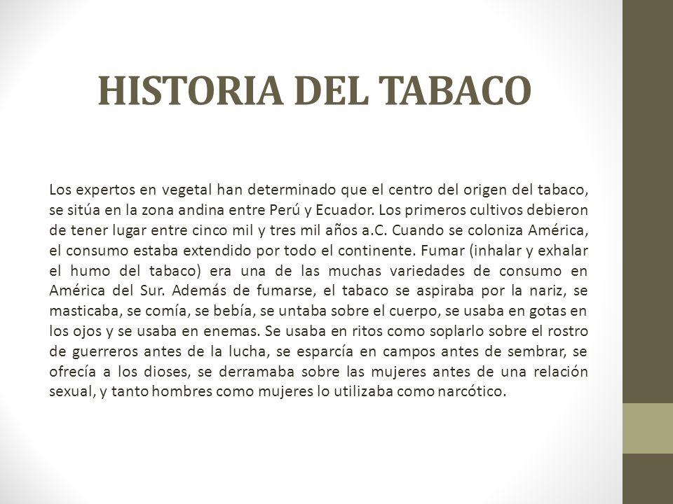 HISTORIA DEL TABACO Los expertos en vegetal han determinado que el centro del origen del tabaco, se sitúa en la zona andina entre Perú y Ecuador. Los