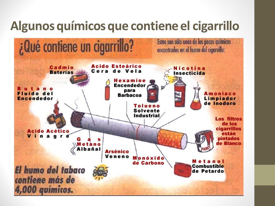 PERJUICIOS PARA LA SALUD Considerado inicialmente como un posible medicamento, el tabaco ha resultado ser, sobre todo a causa de la nicotina, un producto que modifica gravemente las respuestas del sistema nervioso del organismo.