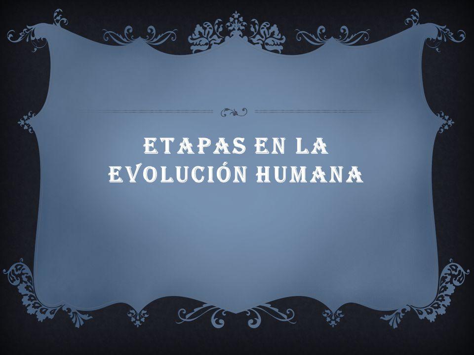 SU EVOLUCIÓN, SE REFIERE A LOS INDIVIDUOS DEL GÉNERO HOMO, HOMININOS, COMO ARDIPITHECUS, AUSTRALOPITHECUS, HOMO SAPIENS