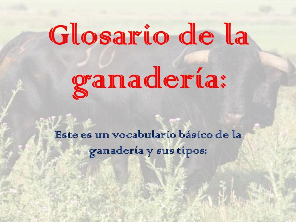 Glosario de la ganadería: Este es un vocabulario básico de la ganadería y sus tipos: