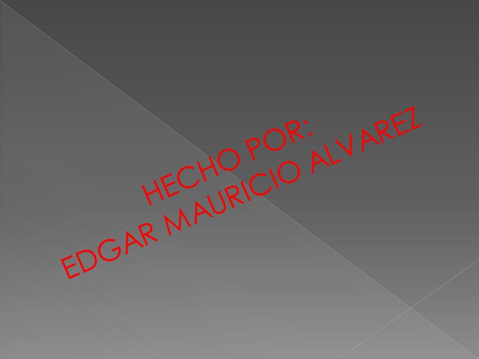 HECHO POR: EDGAR MAURICIO ALVAREZ