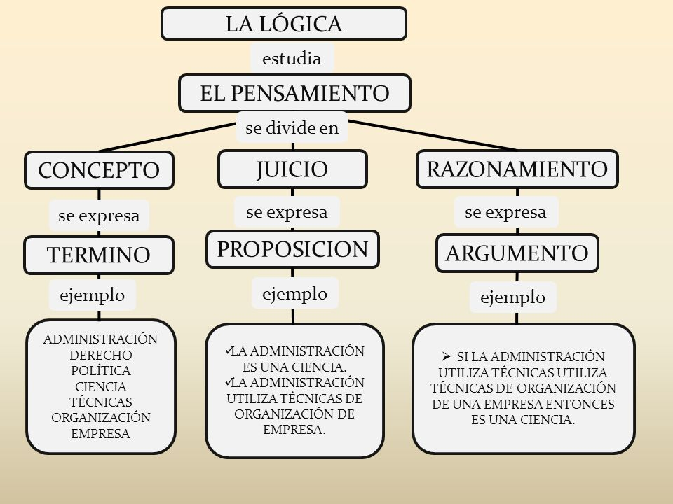 LA LÓGICA EL PENSAMIENTO CONCEPTO JUICIORAZONAMIENTO ARGUMENTO PROPOSICION TERMINO ADMINISTRACIÓN DERECHO POLÍTICA CIENCIA TÉCNICAS ORGANIZACIÓN EMPRE