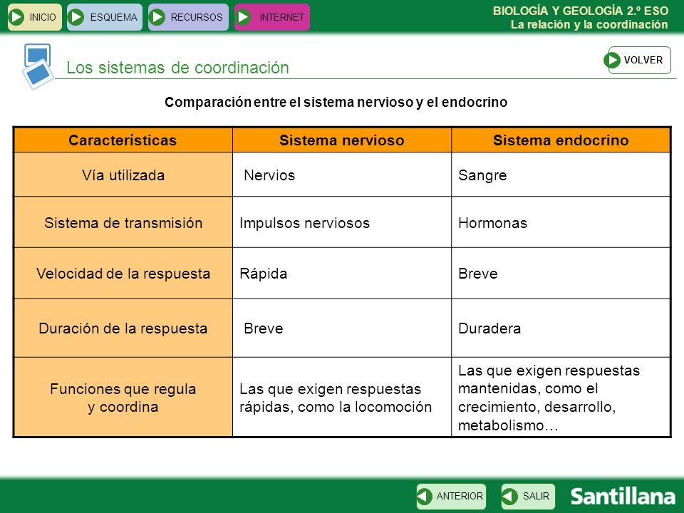 BIOLOGÍA Y GEOLOGÍA 2.º ESO La relación y la coordinación Los sistemas de coordinación INICIOESQUEMARECURSOSINTERNET SALIRANTERIOR CaracterísticasSist