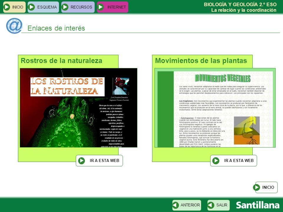 BIOLOGÍA Y GEOLOGÍA 2.º ESO La relación y la coordinación INICIOESQUEMARECURSOSINTERNET Enlaces de interés INICIO SALIRANTERIOR Movimientos de las pla