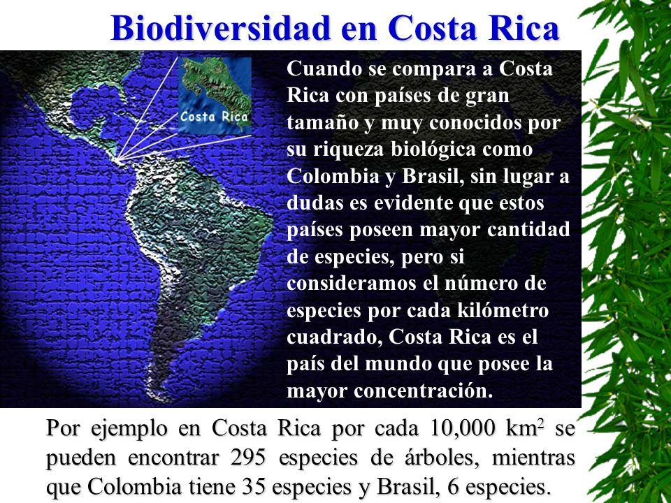 Biodiversidad en Costa Rica Cuando se compara a Costa Rica con países de gran tamaño y muy conocidos por su riqueza biológica como Colombia y Brasil,