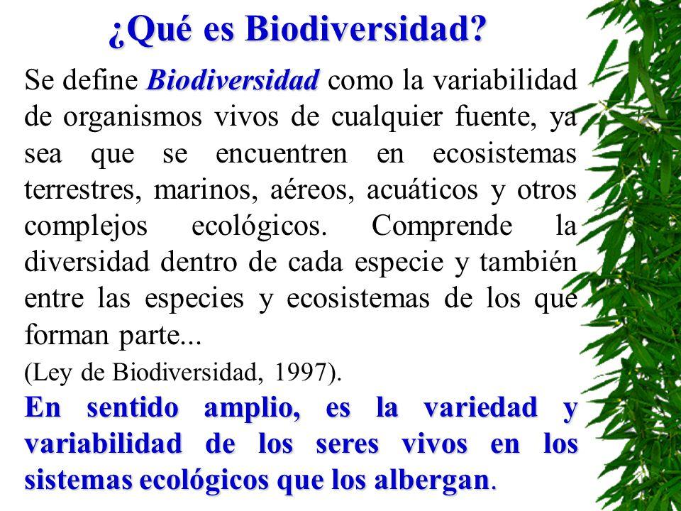 ¿Qué es Biodiversidad? Biodiversidad Se define Biodiversidad como la variabilidad de organismos vivos de cualquier fuente, ya sea que se encuentren en