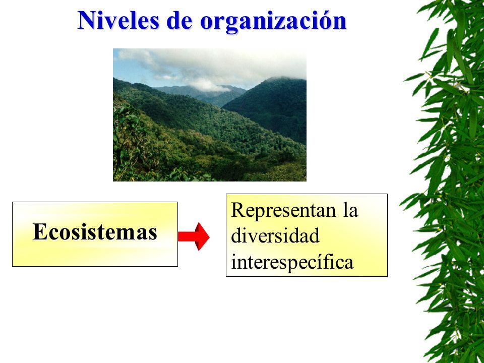 Niveles de organización Ecosistemas Representan la diversidad interespecífica