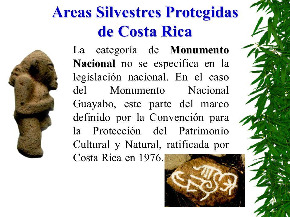 Monumento Nacional La categoría de Monumento Nacional no se especifica en la legislación nacional. En el caso del Monumento Nacional Guayabo, este par