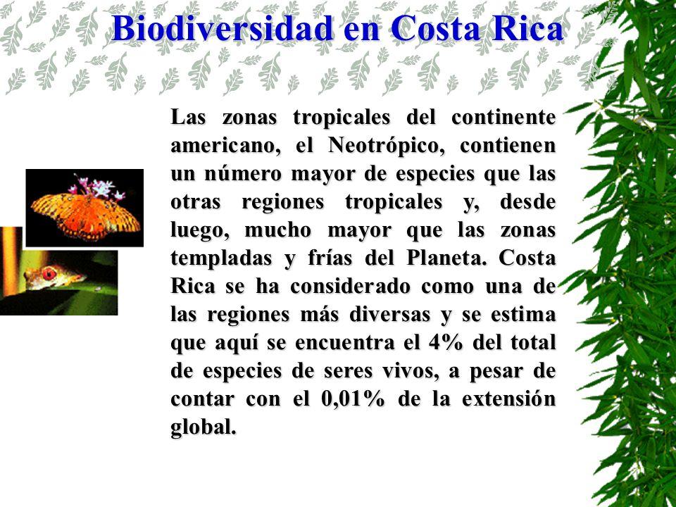 Las zonas tropicales del continente americano, el Neotrópico, contienen un número mayor de especies que las otras regiones tropicales y, desde luego,