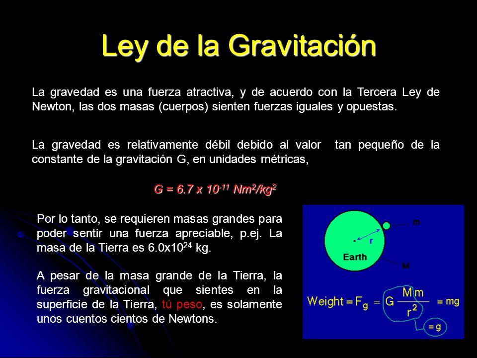 152 Ley de la Gravitación La gravedad es una fuerza atractiva, y de acuerdo con la Tercera Ley de Newton, las dos masas (cuerpos) sienten fuerzas igua