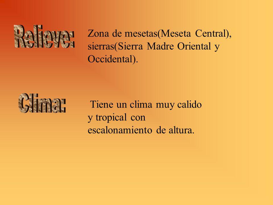 Zona de mesetas(Meseta Central), sierras(Sierra Madre Oriental y Occidental).
