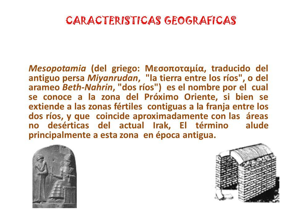 A PARTIR DEL S.XIV aC., LOS ASIRIOS COBRARON HEGEMONIA EN MESOPOTAMIA.