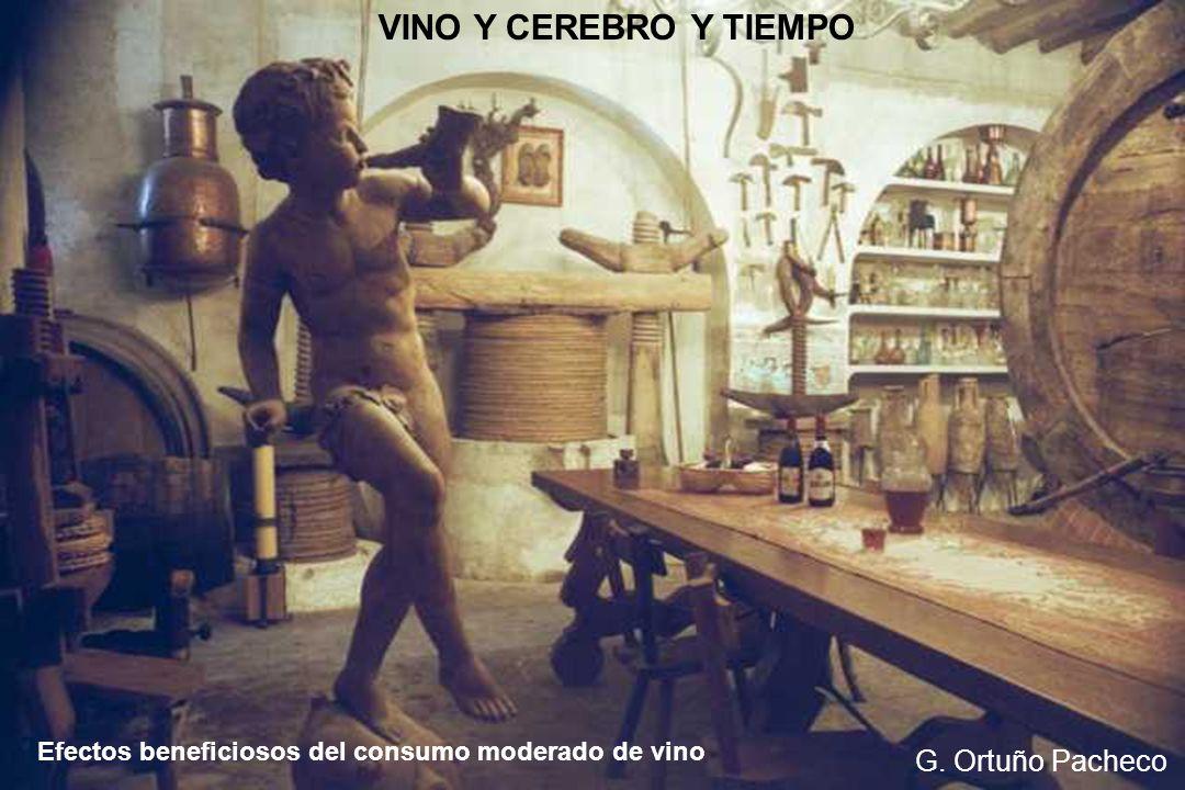 Efectos beneficiosos del consumo moderado de vino G. Ortuño Pacheco VINO Y CEREBRO Y TIEMPO