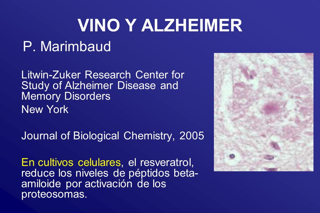 VINO Y ALZHEIMER P. Marimbaud Litwin-Zuker Research Center for Study of Alzheimer Disease and Memory Disorders New York Journal of Biological Chemistr