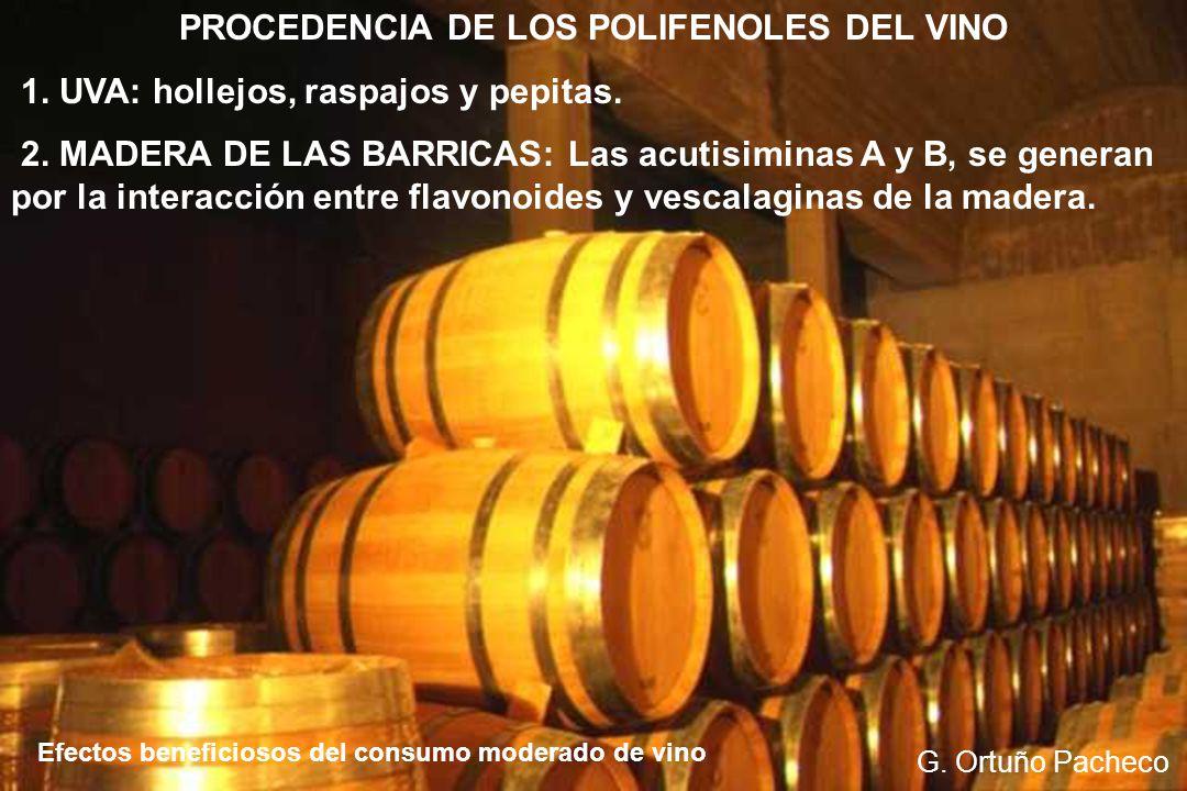 POLIFENOLES DE LA UVA: RESVERATROL Efectos beneficiosos del consumo moderado de vino G.