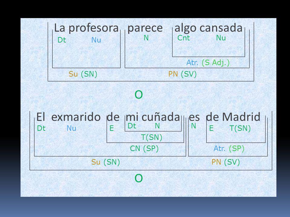 La profesora parece algo cansada El exmarido de mi cuñada es de Madrid O Su (SN)PN (SV) DtNu Atr. (S Adj.) NuCntN O Su (SN) Atr. (SP) N PN (SV) DtNu C