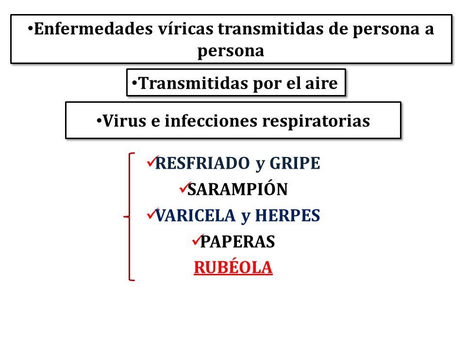 Virus e infecciones respiratorias Enfermedades víricas transmitidas de persona a persona RESFRIADO y GRIPE SARAMPIÓN VARICELA y HERPES PAPERAS RUBÉOLA