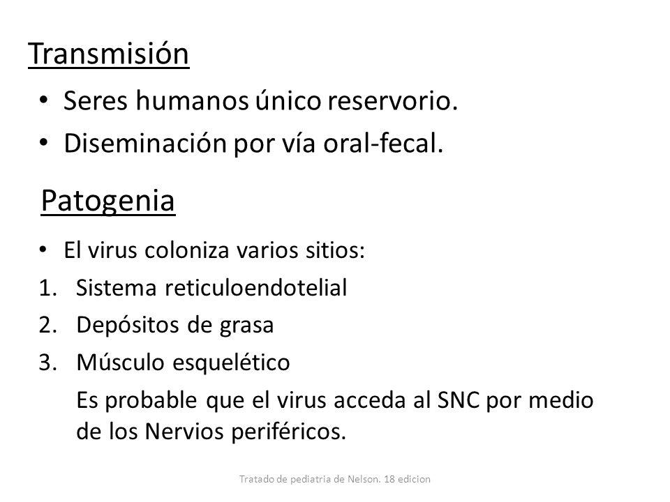 Transmisión Seres humanos único reservorio. Diseminación por vía oral-fecal. Tratado de pediatria de Nelson. 18 edicion Patogenia El virus coloniza va