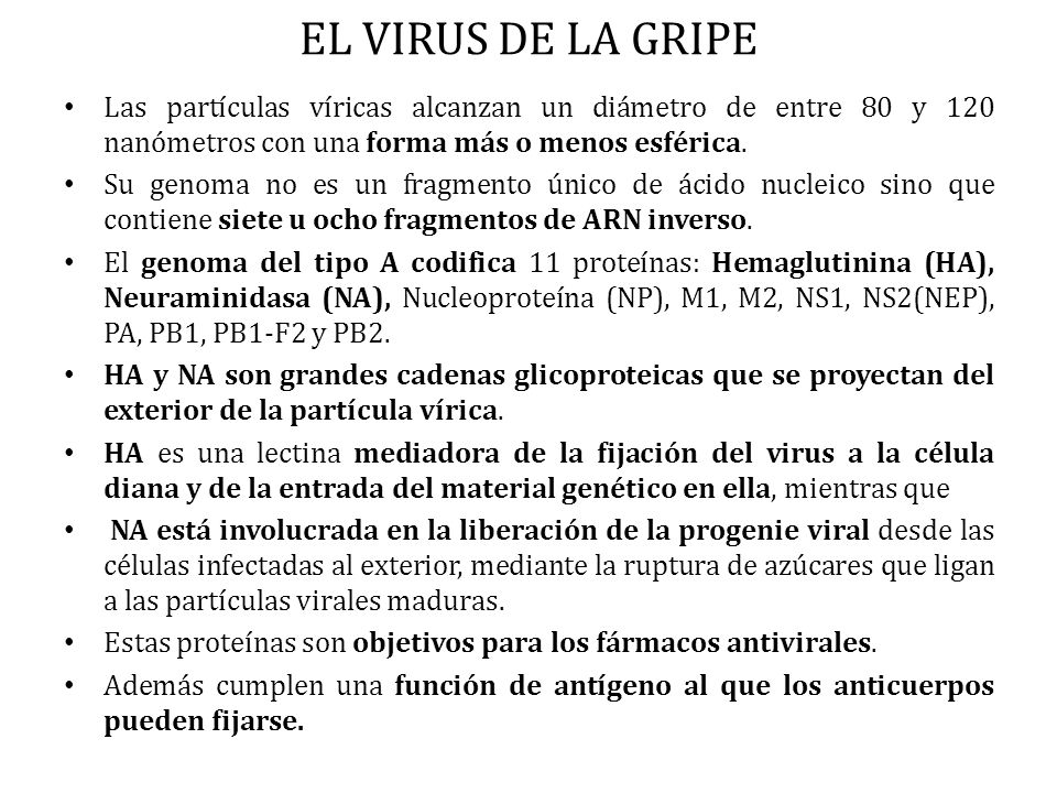 PATOGENIA DEL VIRUS VARICELA.
