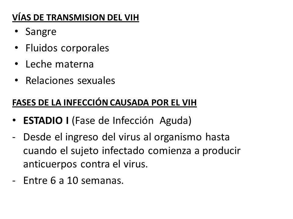 VÍAS DE TRANSMISION DEL VIH Sangre Fluidos corporales Leche materna Relaciones sexuales FASES DE LA INFECCIÓN CAUSADA POR EL VIH ESTADIO I (Fase de In