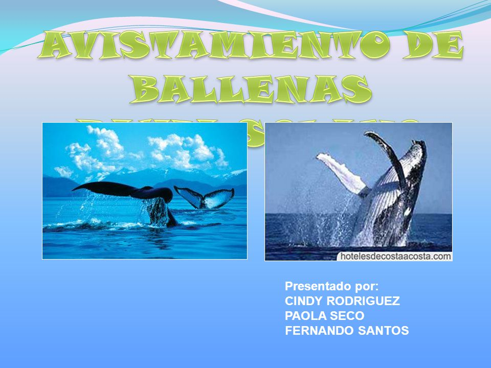 Presentado por: CINDY RODRIGUEZ PAOLA SECO FERNANDO SANTOS