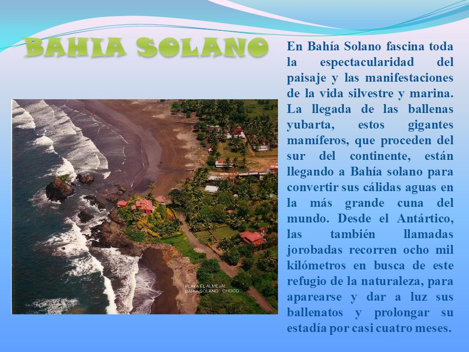 En Bahía Solano fascina toda la espectacularidad del paisaje y las manifestaciones de la vida silvestre y marina.