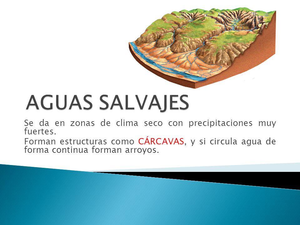 Se da en zonas de clima seco con precipitaciones muy fuertes. Forman estructuras como CÁRCAVAS, y si circula agua de forma continua forman arroyos.