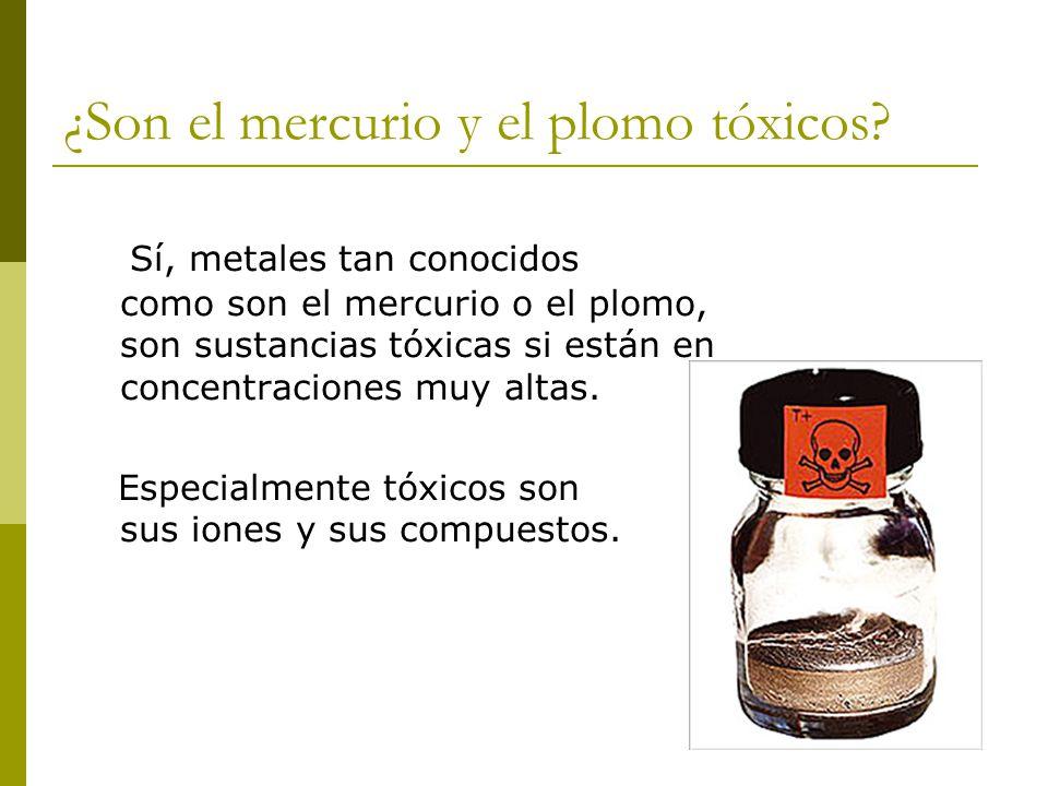 ¿Son el mercurio y el plomo tóxicos? Sí, metales tan conocidos como son el mercurio o el plomo, son sustancias tóxicas si están en concentraciones muy
