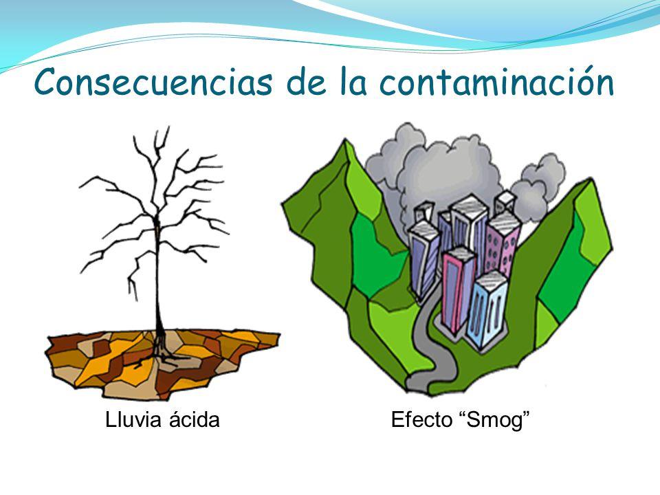 Consecuencias de la contaminación Lluvia ácida Efecto Smog