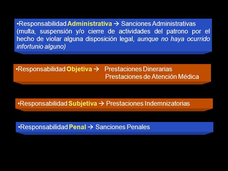 Responsabilidad Objetiva Prestaciones Dinerarias Prestaciones de Atención Médica Responsabilidad Administrativa Sanciones Administrativas (multa, susp
