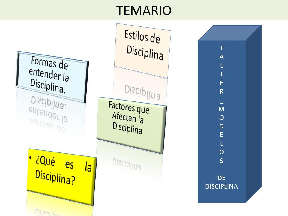 PROBLEMAS DE DISCIPLINA EN RELACION AL MAESTRO Nivel de satisfacción del docente con la tarea de enseñar Relación con el grupo de colegas(conflicto, resentimiento afecta ánimo).