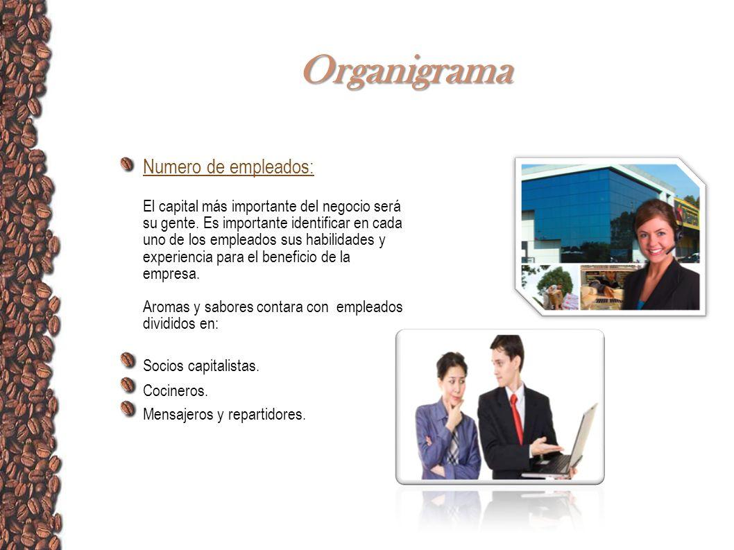Organigrama Numero de empleados: El capital más importante del negocio será su gente. Es importante identificar en cada uno de los empleados sus habil
