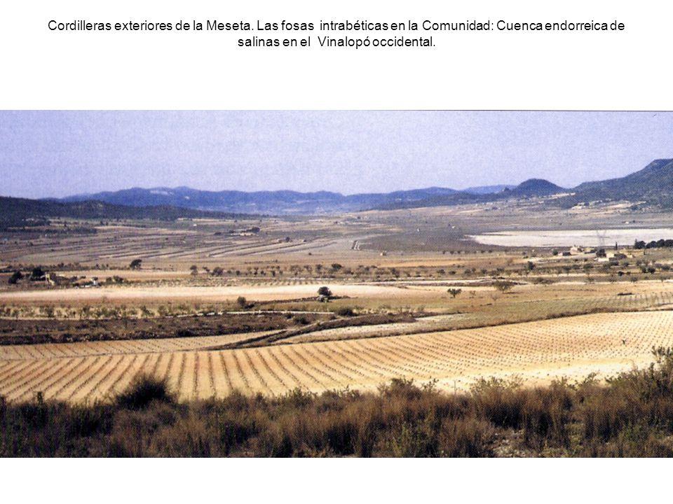 Cordilleras exteriores de la Meseta. Las fosas intrabéticas en la Comunidad: Cuenca endorreica de salinas en el Vinalopó occidental.