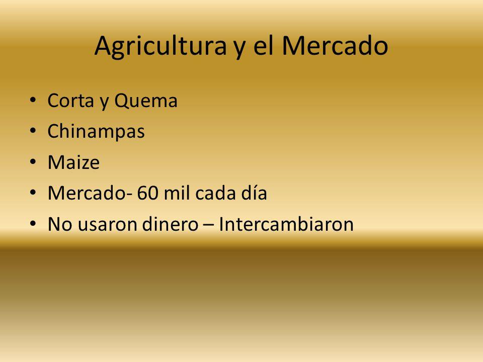 Agricultura y el Mercado Corta y Quema Chinampas Maize Mercado- 60 mil cada día No usaron dinero – Intercambiaron