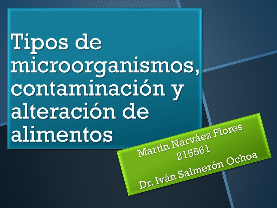 Tipos de microorganismos, contaminación y alteración de alimentos Martín Narváez Flores 215561 Dr. Iván Salmerón Ochoa Martín Narváez Flores 215561 Dr