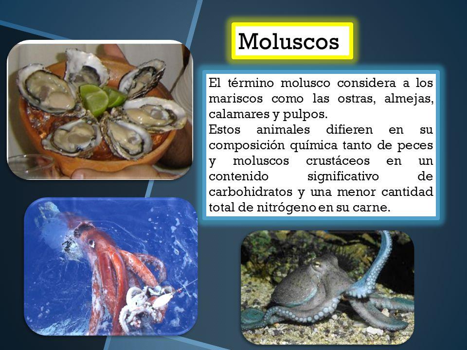 Moluscos El término molusco considera a los mariscos como las ostras, almejas, calamares y pulpos. Estos animales difieren en su composición química t